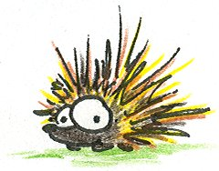 Porcupine- My favorite animal :)