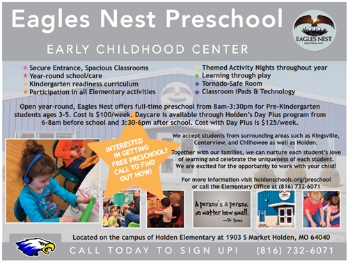 Eagles Nest Flyer